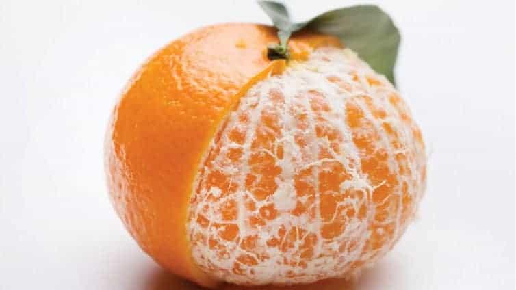 Tangerine for Dogs 2