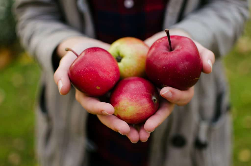 Kinds of Apples