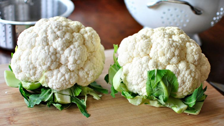 cauliflower for dogs