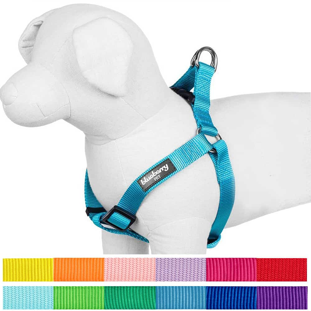 The Blueberry Pet harness