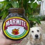 can dogs eat marmite